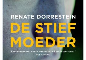 'De stiefmoeder' van Renate Dorrestein