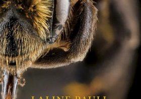 'De Bijen' door Laline Paull